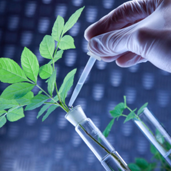 Biotechnology for agriculture
